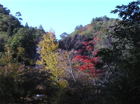 Image436