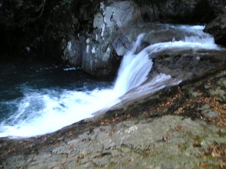 Image528