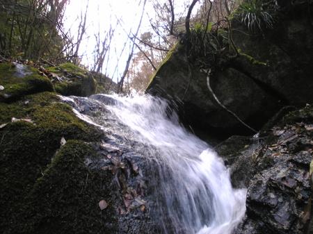 Image549