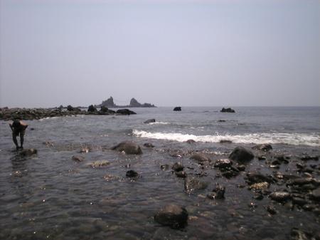 Image1238
